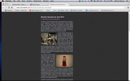 Muestra Nacional de Arte 2013